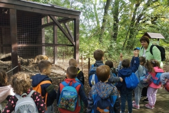 Állatok világnapja a benka ovikban